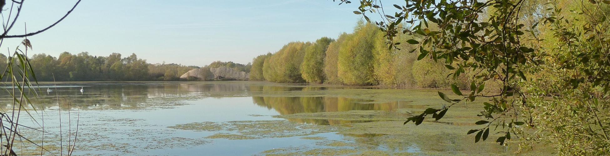 Ate dev bureau d 39 tudes expert de l 39 environnement for Bureau etude eau environnement